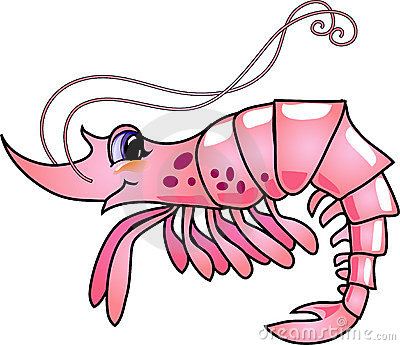 Cartoon Shrimp