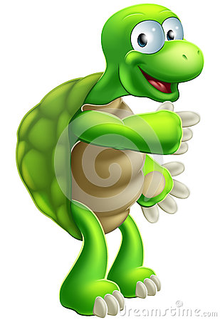 Cartoon Tortoise or Turtle pointing
