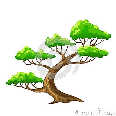 Cartoon Tree Bansai With White Background Royalty Free Stock Image ...