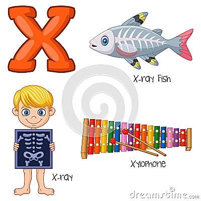 Free Cartoon X Alphabet Stock Photography - 123696942