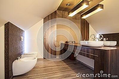 Casa del paese controsoffitto del bagno fotografie stock - Controsoffitto bagno ...