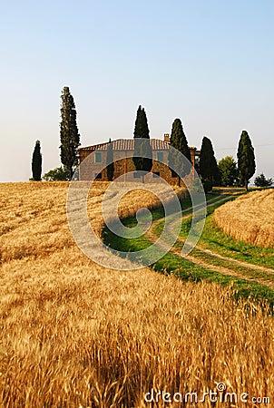 Casa di campagna della toscana immagine stock immagine for Architettura della casa di campagna