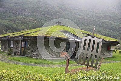 Casa insolita con erba sul tetto norvegia fotografia for Stili tetto tetto