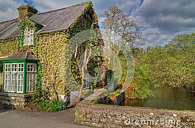 Casa irlandesa de la cabaña
