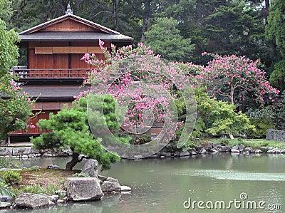 O Começo do Começo - Dainn - Página 2 Casa-japonesa-e-seu-jardim-thumb29711