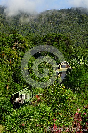 Casas velhas em montes tropicais