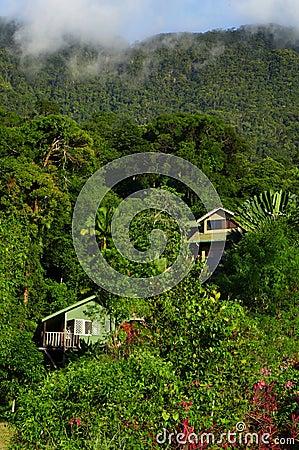 Casas viejas en colinas tropicales