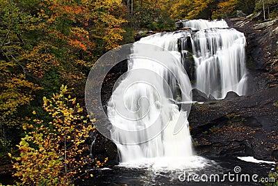 Cascada - caídas calvas del río, Tennessee