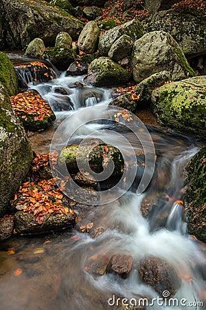 Cascada del otoño