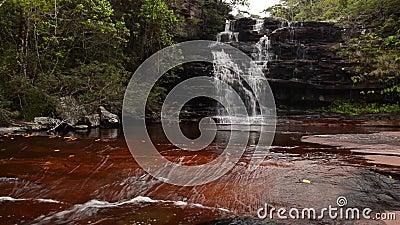 Cascada en Chapada Diamantina, el Brasil almacen de video
