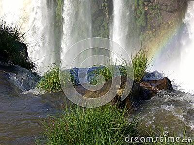 Cascade à écriture ligne par ligne d Iguaçu