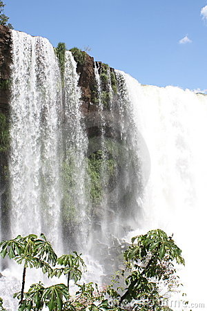Cascade à écriture ligne par ligne tropicale du Brésil