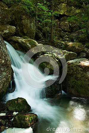 Cascade with mossy rocks in forest