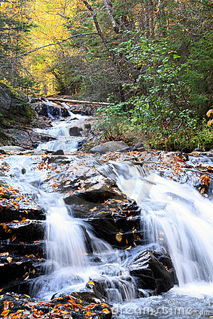 Cascade river flow with fall foliage