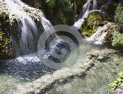 Cascade in spring forest