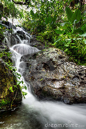 Cascades in Mexican jungle