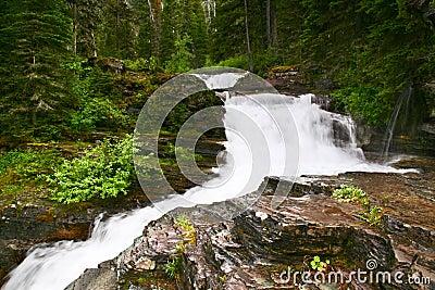Cascading Falls, Glacier National Park, Montana