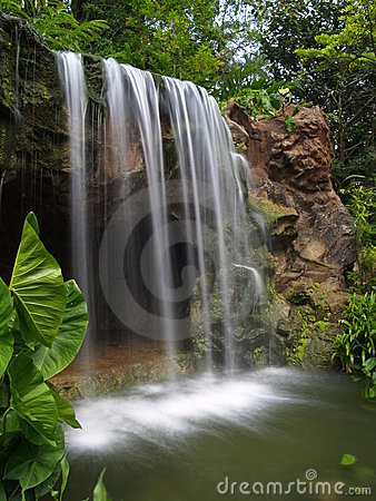 Cascata al giardino botanico