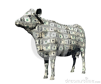 CASH COW IN BULL MARKET FINANCIAL PLANNING WEALTH