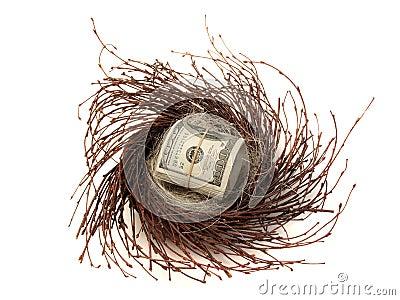 Cash in nest egg