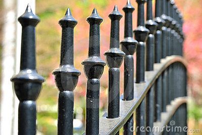 Cast Iron Fence in a Park