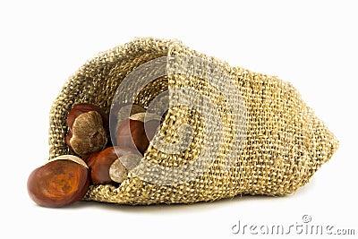 Casta as en saco de la arpillera foto de archivo imagen - Saco arpillera ...