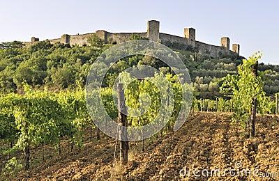 Castello Monteriggioni, Tuscany, Italy
