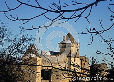 Castelnaud Medieval Castle, Dordogne, France