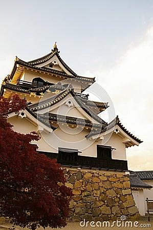 Castelo de Hikone - parte dianteira da esquerda