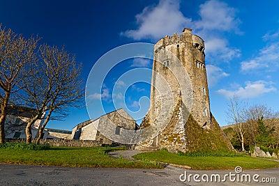 Castelo de Newtown em Co. Clare