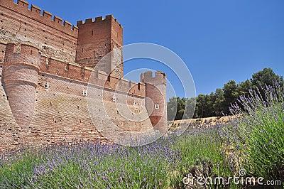 Castillo de la Mota. Medina del Campo, Spain