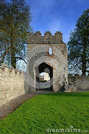 Castillo del siglo XVII/abadía de Monkstown