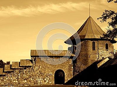 Castillo viejo III
