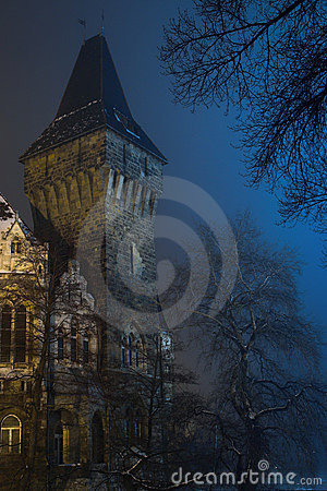 Free Castle 1. Royalty Free Stock Images - 503769