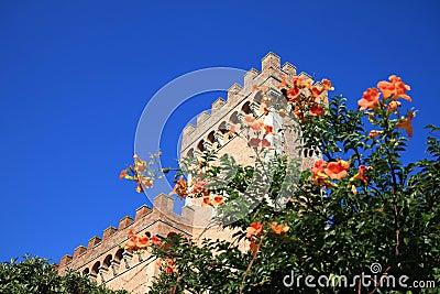Castle in Bolgheri near the Etruscan coast, Italy