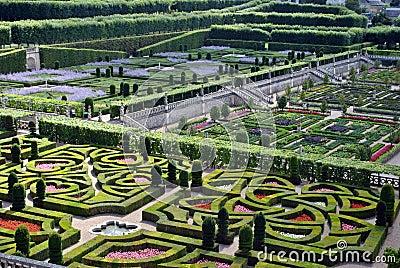 Castle garden Villandry