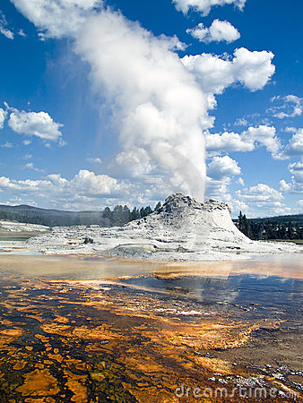 Free Castle Geyser, Yellowstone National Park, Wyoming Stock Photo - 14374000