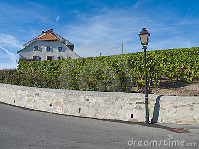 Castle in Lavaux vineyards, Switzerland