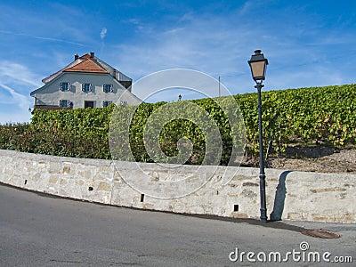 Castle in Lavaux vineyards, Switzerland