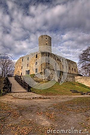 Castle in Lipowiec