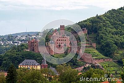 Castle ruin of  Wertheim