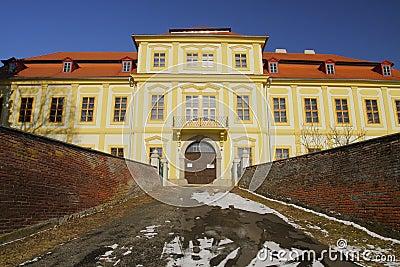 Castle in Svojsin