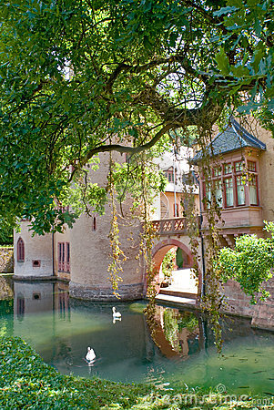 Castle with swan lake, Europe