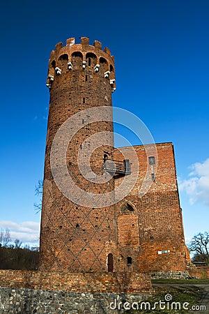 Castle of Swiecie