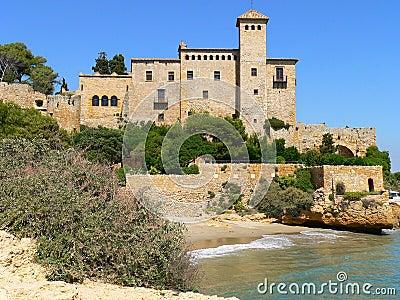 Castle, Tamarit (Spain )