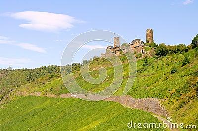 Castle Thurant