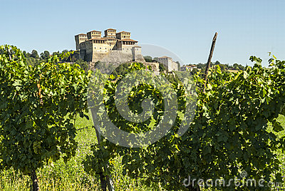 Castle of Torrechiara and vineyard