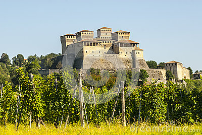 Castle of Torrechiara and vineyard
