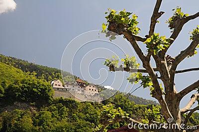 Castle in Vaduz