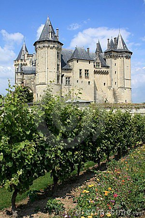 Castle and vineyard in France (Loire region)